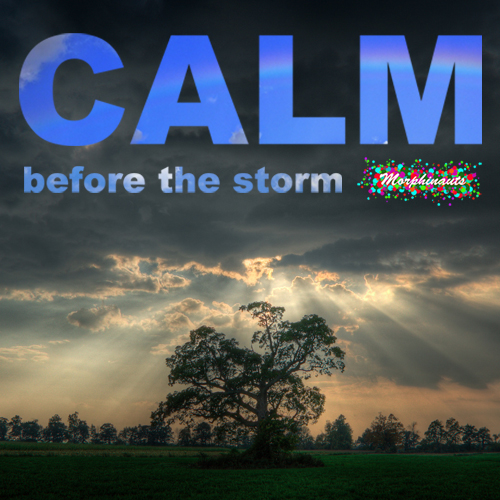 Morphinauts - calm Before The Storm (Kompakt Pop Ambient Tribute) cover