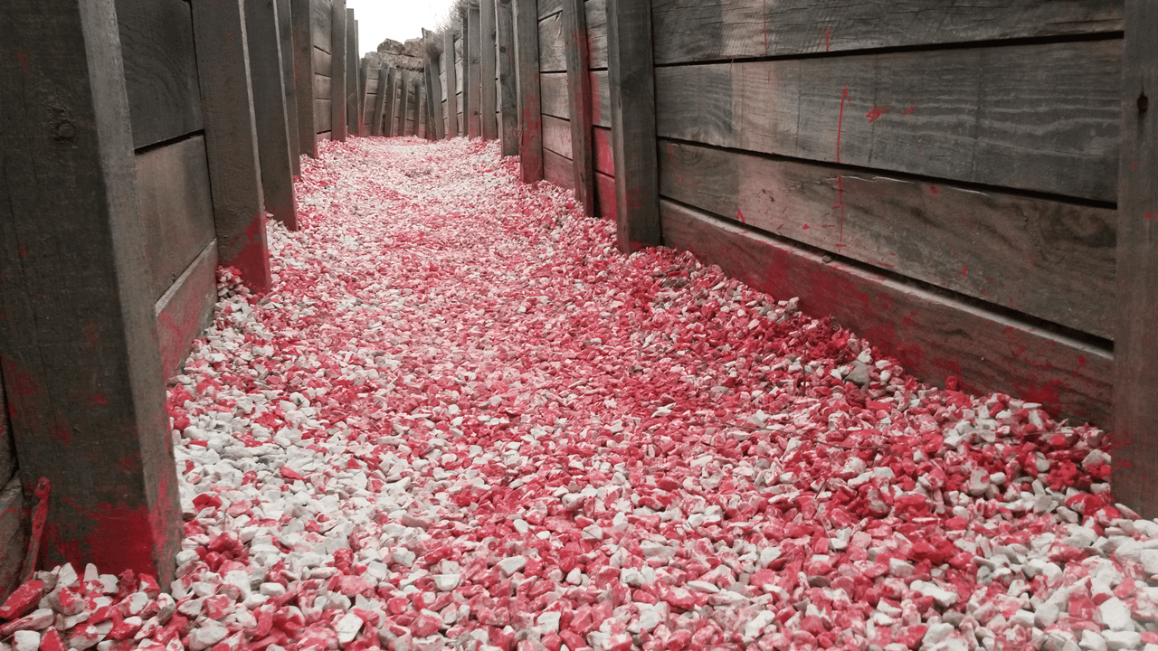 Homenaje a Los Monegros - Massimo Burgio - Spanish Civil War trenches - Ruta Orwell - Monegros