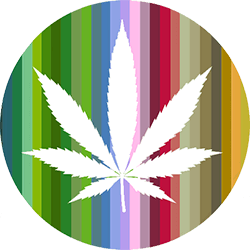 Project Inspiration #1: Cannabis Culture (of course)