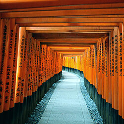 Project Inspiration #3: Fushimi Inari-Taisha in Kyoto, Japan