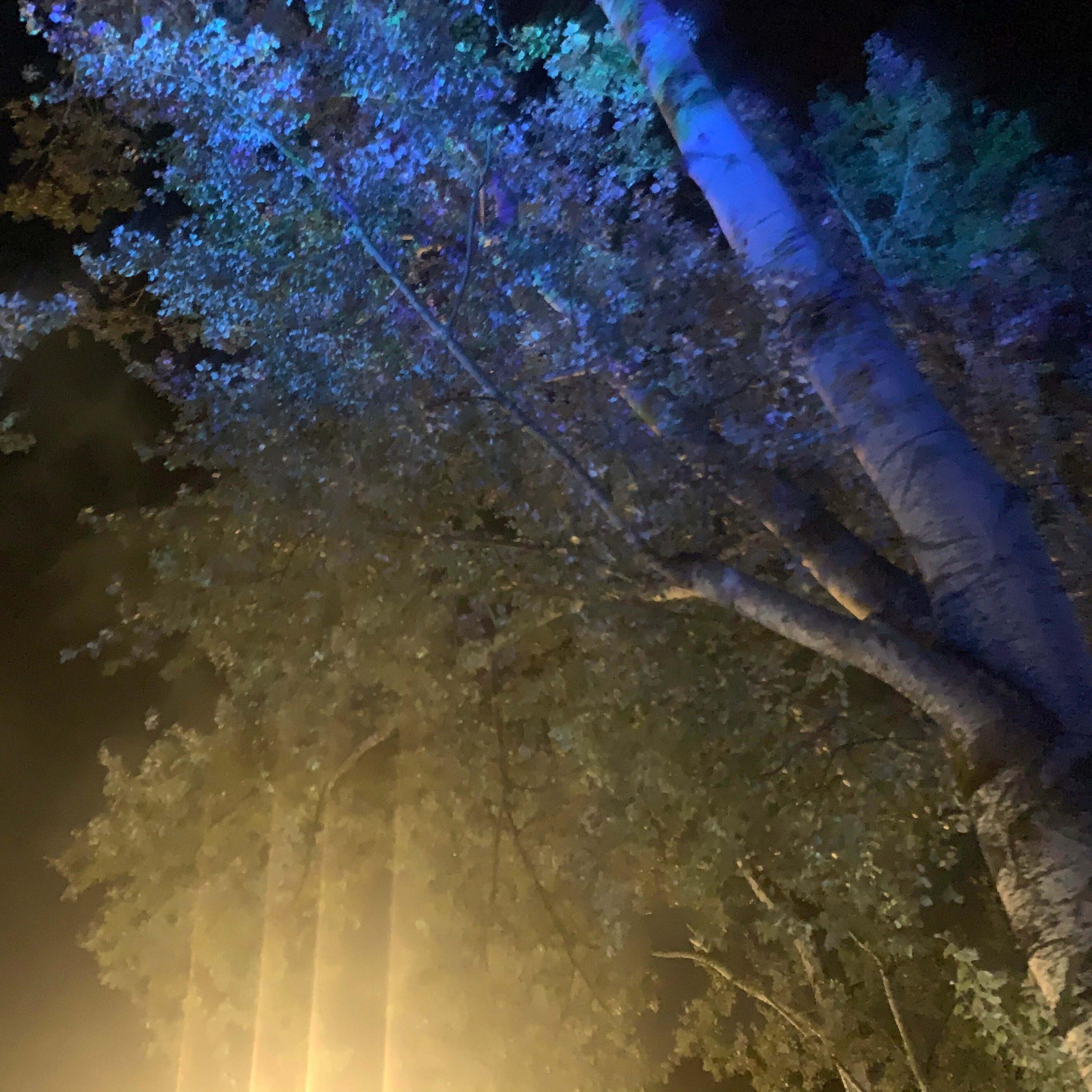 Burningmax: Breathe | Art installation | Villa Ada lake, Rome Italy | Art installation detail