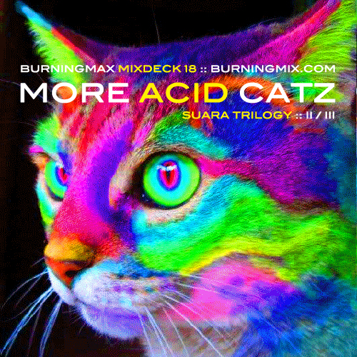 Burningmix 18 :: More Acid Catz (Suara 2 of 3)
