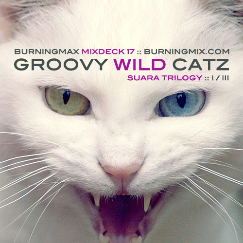 Burningmix 17 :: Groovy Wild Catz (Suara 1 of 3)