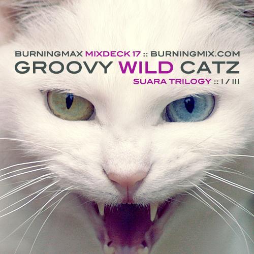 Burningmix 17 :: :: :: :: :: :: :: :: :: :: Groovy Wild Catz (Suara 1-3)
