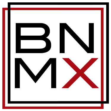 Burningmax logo / Icon