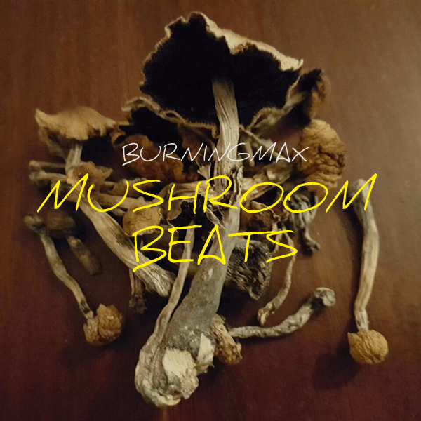 Burningmax Presents – Mushroom Beats